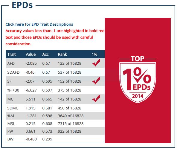 Apocalypse Top EPDs
